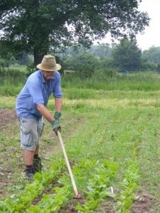 Five Acre Man Tending Vegetables
